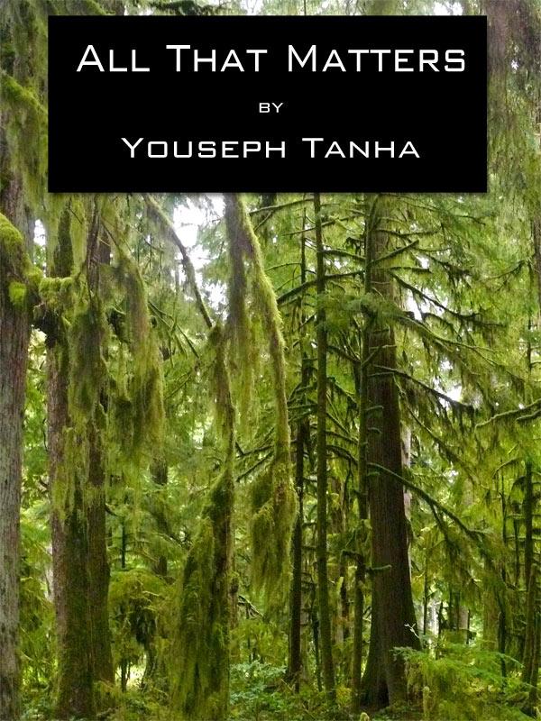 Web Book Cover 4